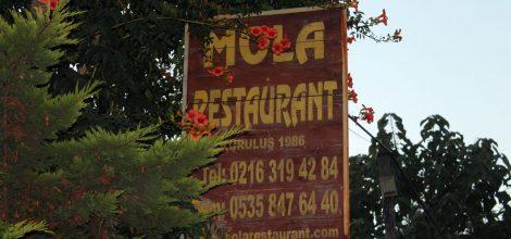 mola-restaurant