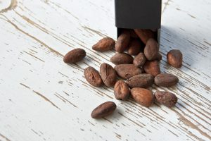 cocoa-bean-1282878_1920